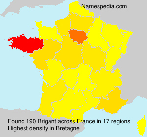 Surname Brigant in France
