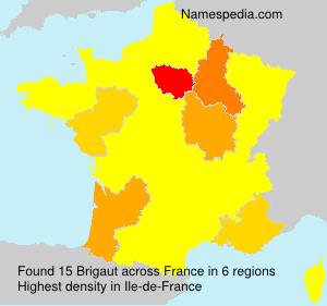 Surname Brigaut in France