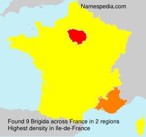 Surname Brigida in France