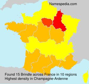 Familiennamen Brindle - France