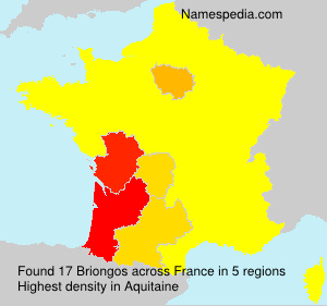 Surname Briongos in France