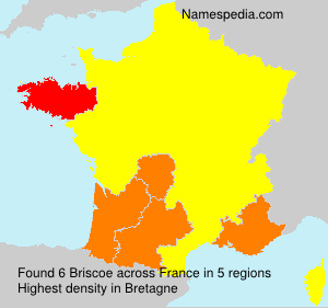 Surname Briscoe in France