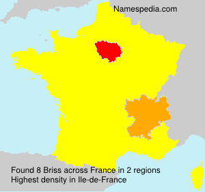 Surname Briss in France