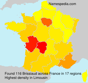 Surname Brissiaud in France