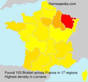Surname Bristiel in France