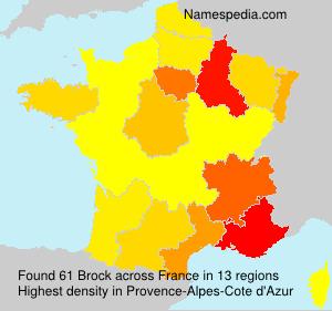 Surname Brock in France