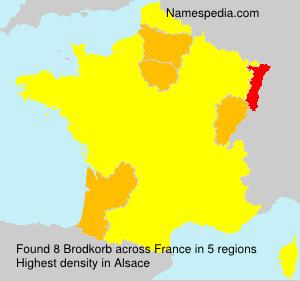 Surname Brodkorb in France