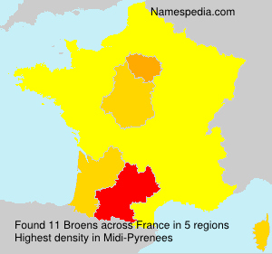Surname Broens in France