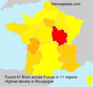 Familiennamen Broin - France