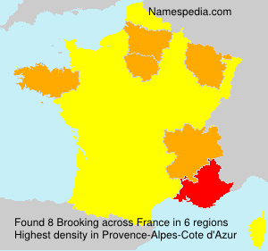 Surname Brooking in France