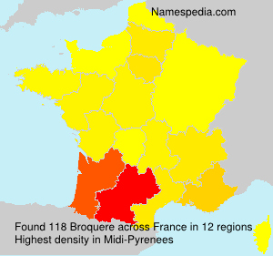 Surname Broquere in France