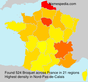 Surname Broquet in France