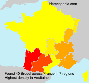 Surname Brouel in France