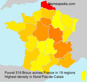Surname Broux in France
