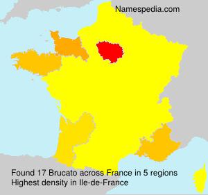 Familiennamen Brucato - France