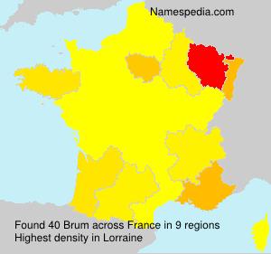 Familiennamen Brum - France