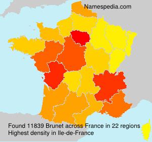 Surname Brunet in France