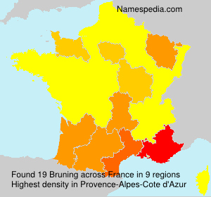 Surname Bruning in France