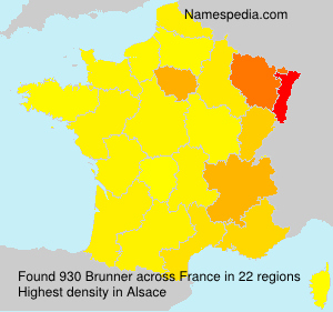 Surname Brunner in France