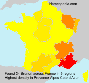 Surname Brunori in France