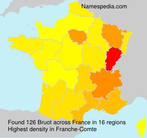 Surname Bruot in France