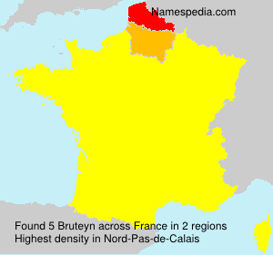 Surname Bruteyn in France
