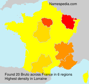 Surname Bruto in France