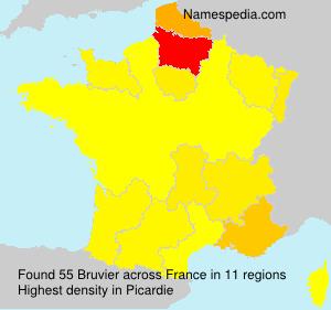Bruvier