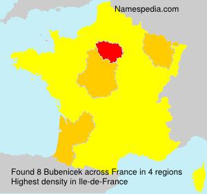 Familiennamen Bubenicek - France