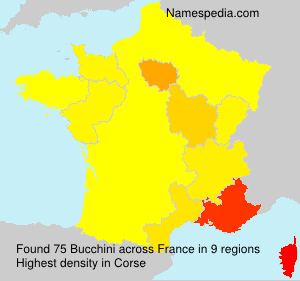Surname Bucchini in France