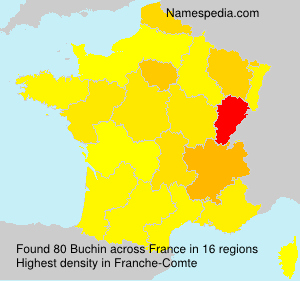 Surname Buchin in France