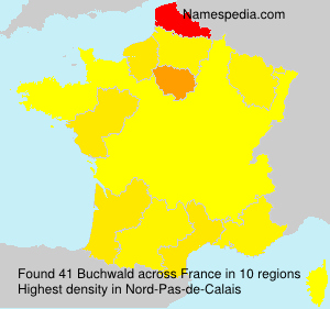 Surname Buchwald in France