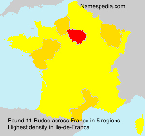 Surname Budoc in France