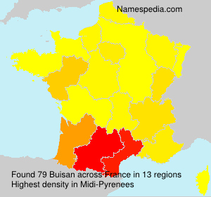Surname Buisan in France