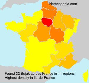 Surname Bujak in France