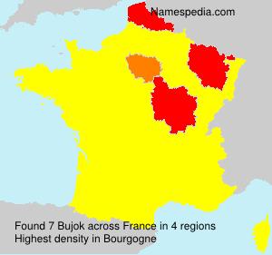 Familiennamen Bujok - France