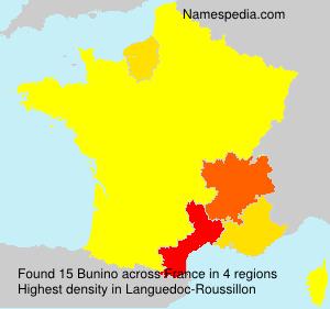Surname Bunino in France