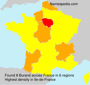 Surname Burand in France