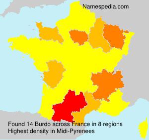 Surname Burdo in France