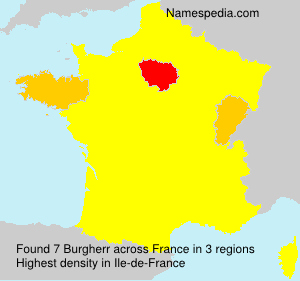 Surname Burgherr in France