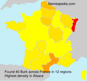 Surname Burk in France