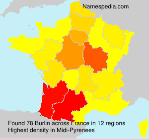 Surname Burlin in France