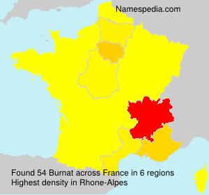 Surname Burnat in France