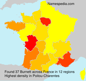 Surname Burnett in France