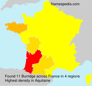 Surname Burridge in France