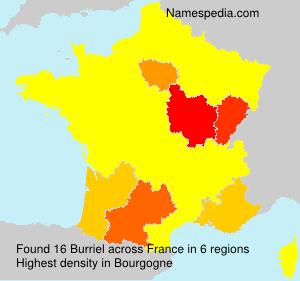 Surname Burriel in France