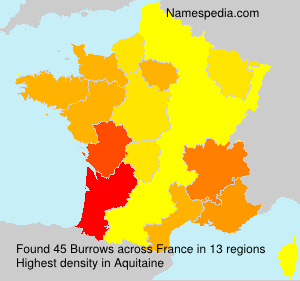 Surname Burrows in France
