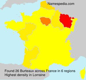 Familiennamen Burteaux - France