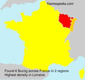 Familiennamen Burzig - France