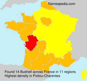 Surname Bushell in France